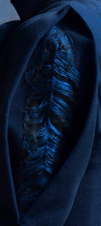 Detail of her Blue Suit Sleeve